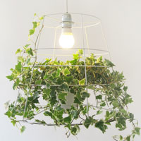 photosynthesis-lamp_3_cowandco.co_A